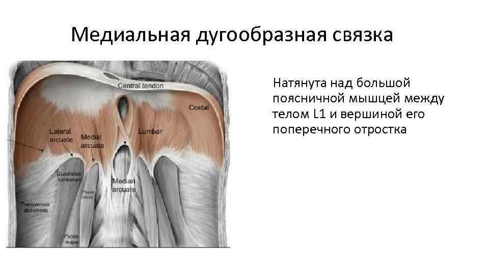 Risti ola liigese anesteesiale Valu liigeste neuroloog