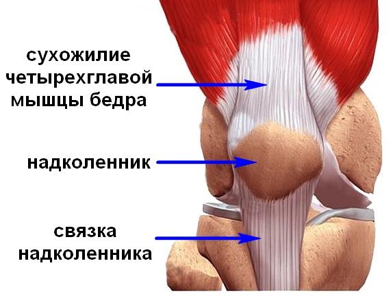 Henna liigeste raviks