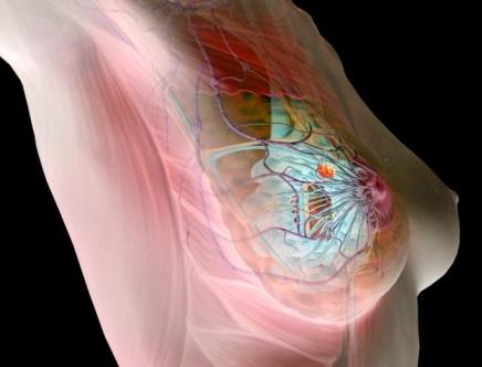 valu liigeste valu tsukli keskel