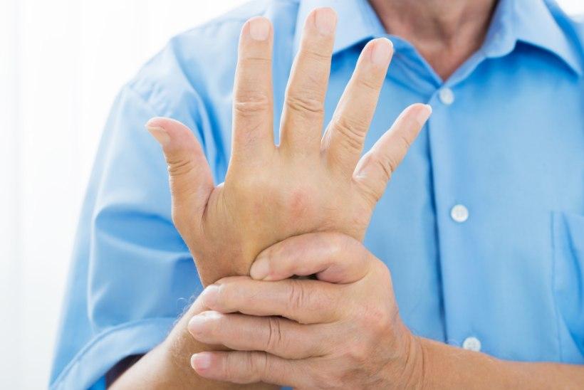 omatehtud salvi liigestele Loogastav salv osteokondroosiga
