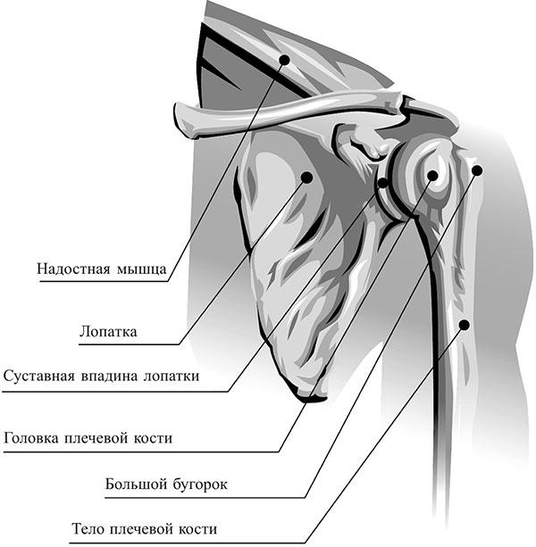 Brachiaalse valu eemaldamine