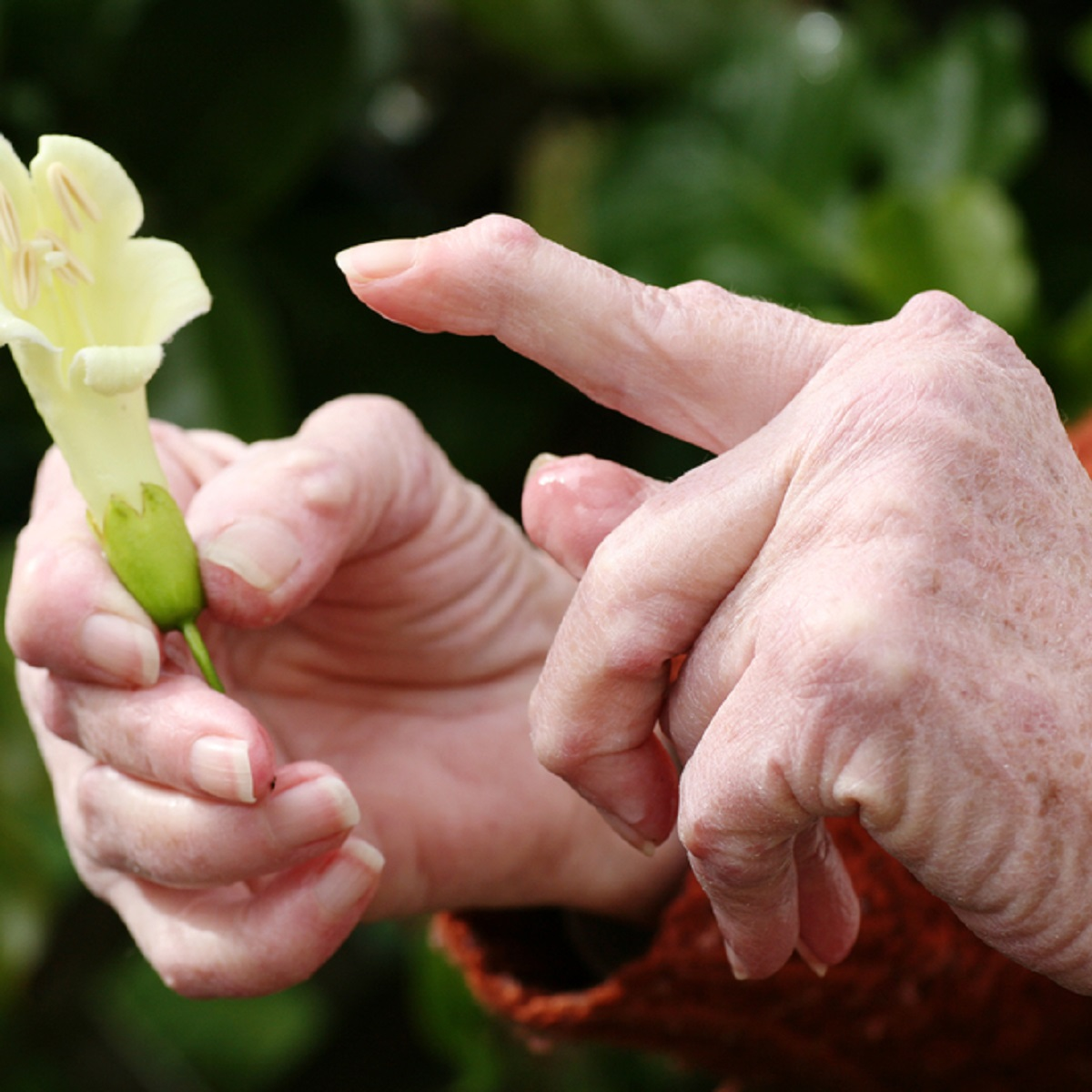 reumatoidartriidi harja kasitsi ravi Salv ola liigese artriidi ja artriidi