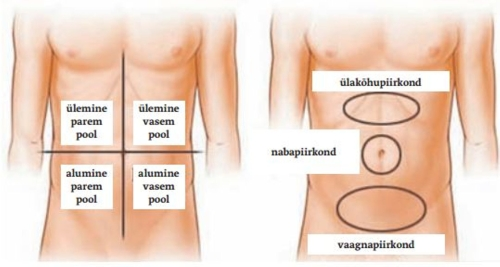 Ribi liigeste artroos