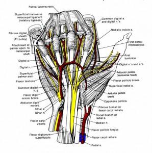 Kui liigesed kahjustavad sorme