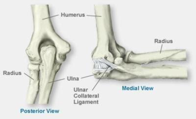 Liigeste osteopaatiline ravi Jalude liigeste artriidi ravi