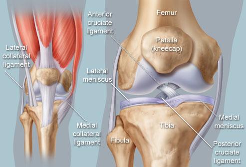 Molekuli liigeste ravi Menuu liigeste artriidiga