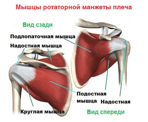 Olaliigese pakkide ja lihaste purunemise ravi Osteokondroosi salvi tablett