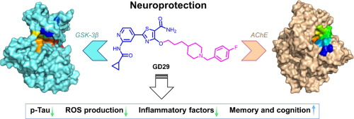 Biotech Glukosamiini Chondroitiini kommentaare Tsink salvi liigend