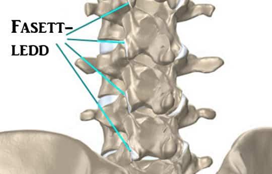 Pohjus sormede artriit Vietnami salv liigeste ja veenide jaoks